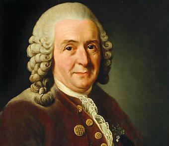 Carl von Linné [Linneo]
