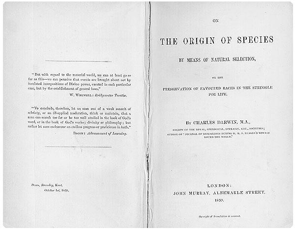 Charles Darwin. La teoría de Darwin mantiene que los efectos ambientales conducen al éxito reproductivo diferencial en individuos y grupos de organismos. La selección natural tiende a promover la supervivencia de los más aptos. Esta teoría revolucionaria se publicó en 1859 en el famoso tratado El origen de las especies por medio de la selección natural.