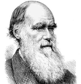 Resultado de imagen para evolucion del hombre charles darwin